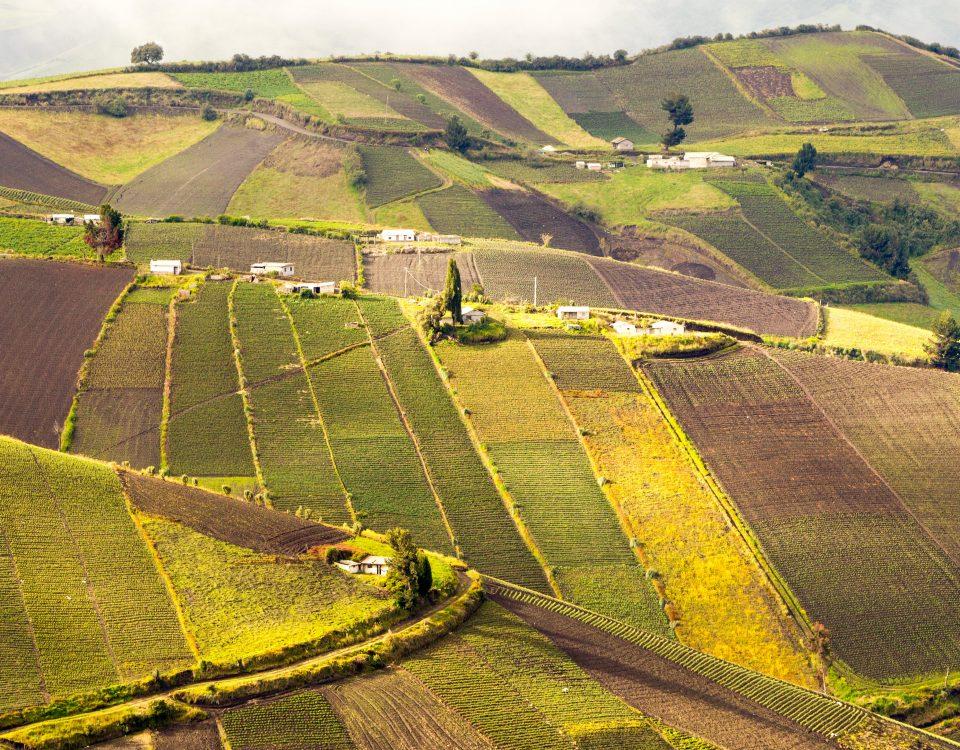 grunt rolny warunki zabudowy