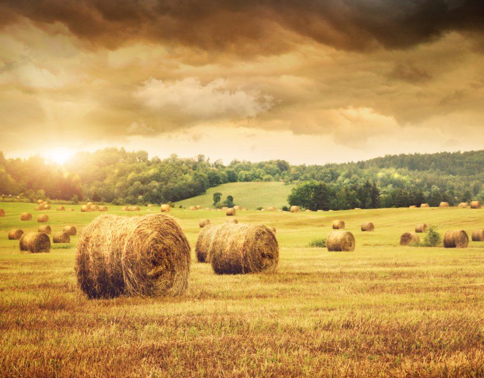 grunt rolny plan zagospodarowania przestrzennego